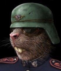 Military CI Agent